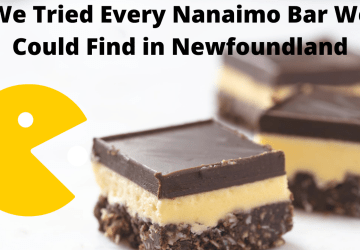 We Tried Every Nanaimo Bar in Newfoundland We Could Find
