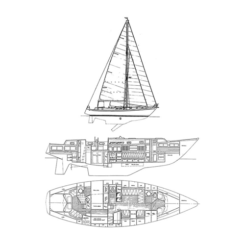 Illustration of a Brewer 42