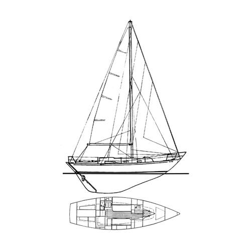 Illustration of a Rustler 31