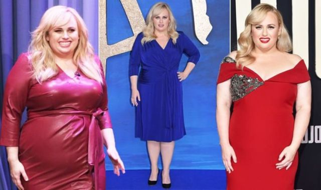 All You Need to Know About Rebel Wilson