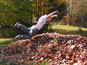 Pile-of-Leaves