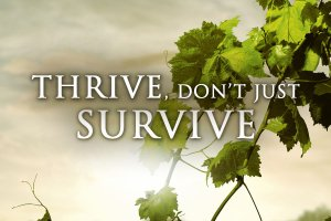 Thrive-Dont-Just-Survive