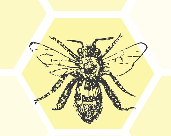 Bee Booklet