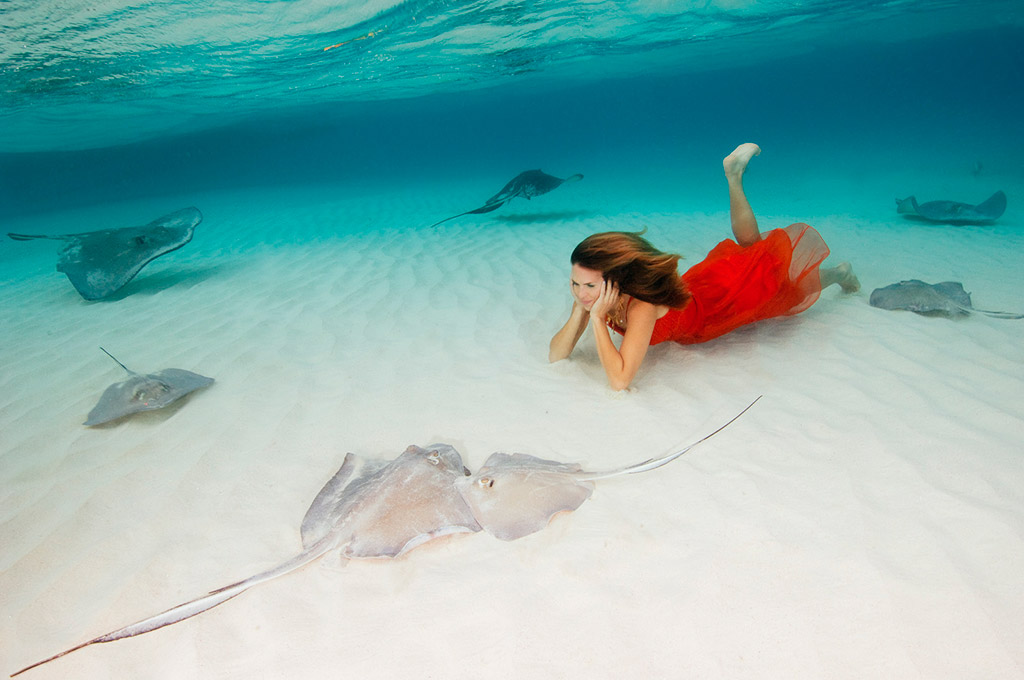 Stingray City, coral formations, macro and shipwrecks, the Cayman Islands offer a vast array of underwater photography opportunities.