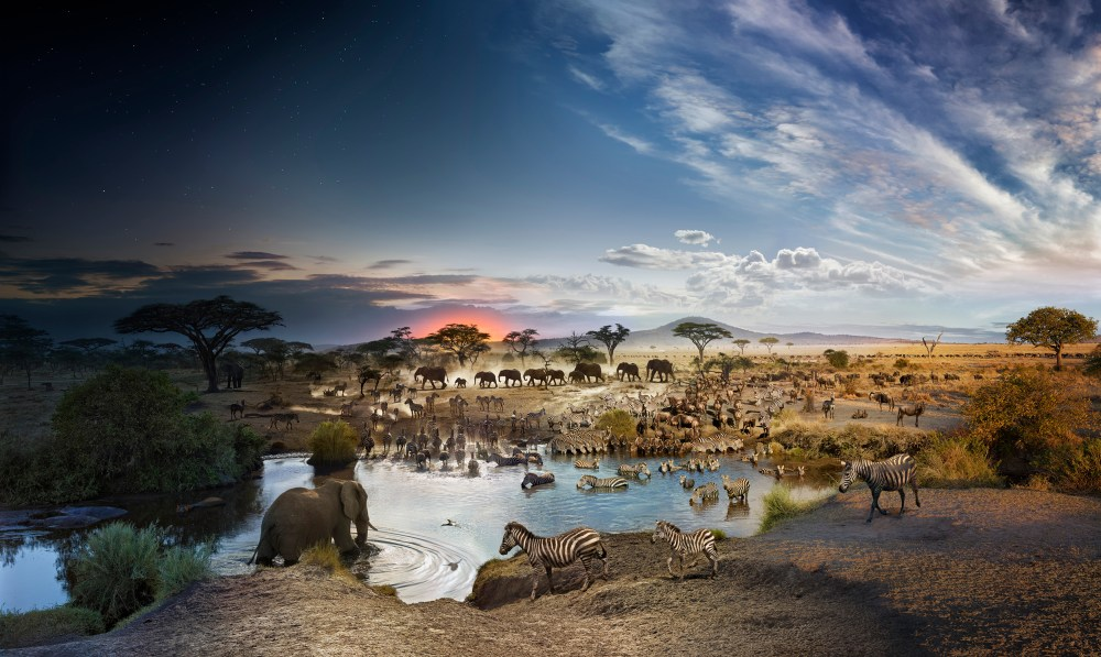 Day to Night – Serengeti National Park, Tanzania –  by Stephen Wilkes