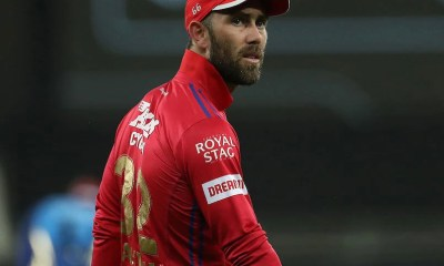 "Glenn Maxwell Responds To Virender Sehwag's ""10-Crore Cheerleader"" Dig 