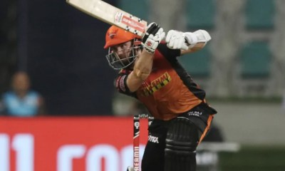IPL 2020, DC vs SRH Qualifier 2: Kane Williamson Says