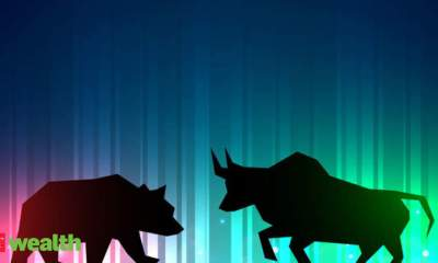 Animal instincts that stock market investors have - Which investing creature are you?