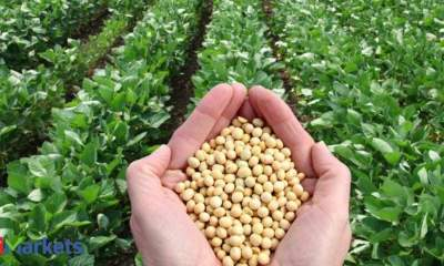 Soybean futures slip on muted demand