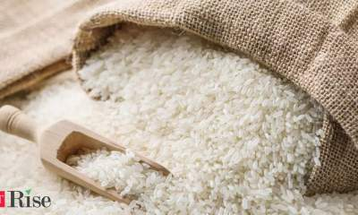 India rice rates at 4-1/2-year low on weak demand, high shipping costs