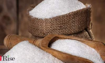 India sugar mills pause export deals in bet price will rise more