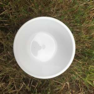 petit pot de fleur blanc