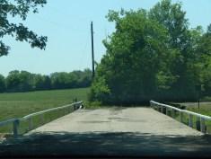 Duane's Bridge 3