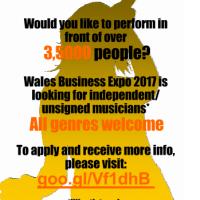 UPDATE: WALES BUSINESS EXPO IS LOOKING FOR INDIE/UNSIGNED ARTISTS TO PERFORM AT THEIR EVENT