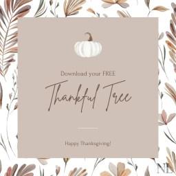 Thanksgiving Gratitude New Life