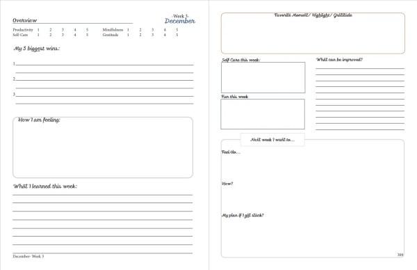 printable planner week reflection