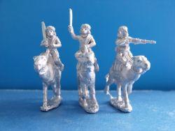 Ansar Warriors on Camels