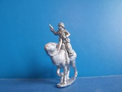 Mounted Camel Corp Officer
