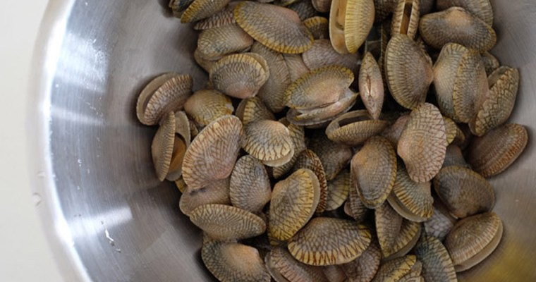 How to choose & clean clams the right way