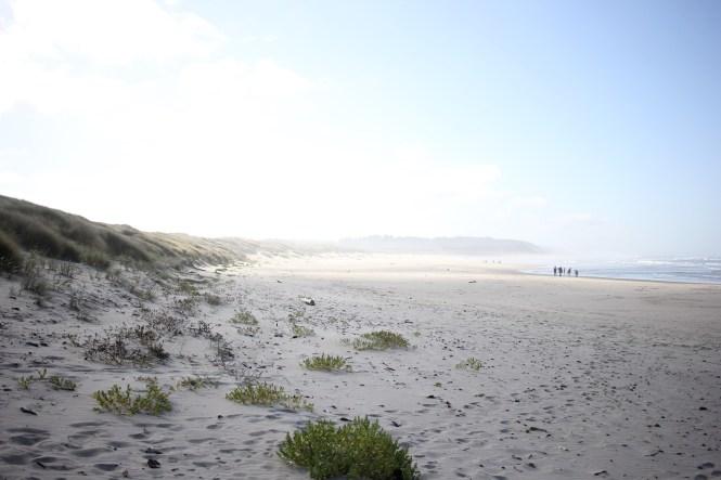 oregon coast, newport oregon, south beach state park, oregon coast camping