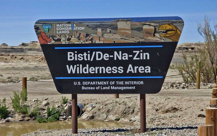 Bisti/De-Na-Zin Wilderness Area