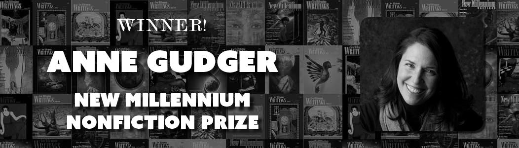 44th New Millennium Nonfiction Prize Winner - 2017