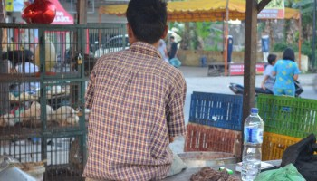 Indonesia's Small Fry Drug Dealers - New Naratif