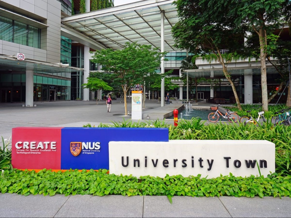 National University of Singapore - New Naratif