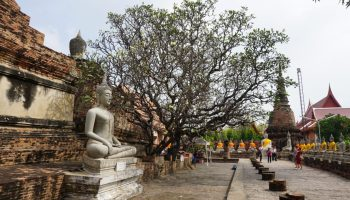 Buddhism - New Naratif