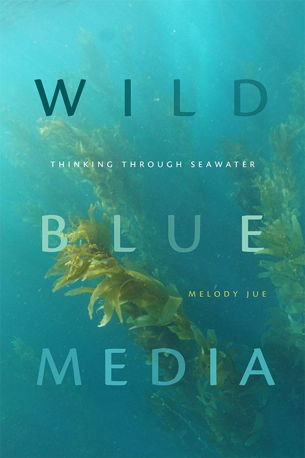 Wild Blue Media