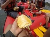 Fresh pineapple while rafting anyone?
