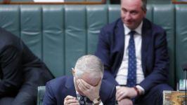 Turnbull Joyce