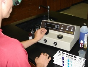 Student uses spectrophotometer