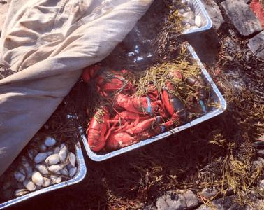 Lobster Newport RI