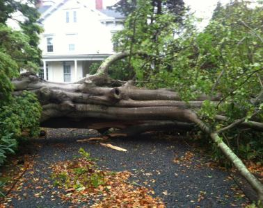 Hurricane Sandy Newport RI