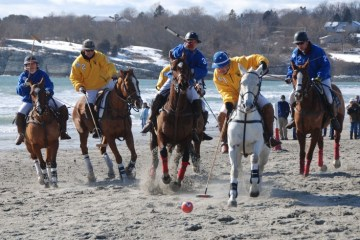 Beach Polo Newport RI