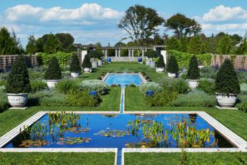 Blue Gardens Newport RI