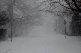 Snow Newport RI