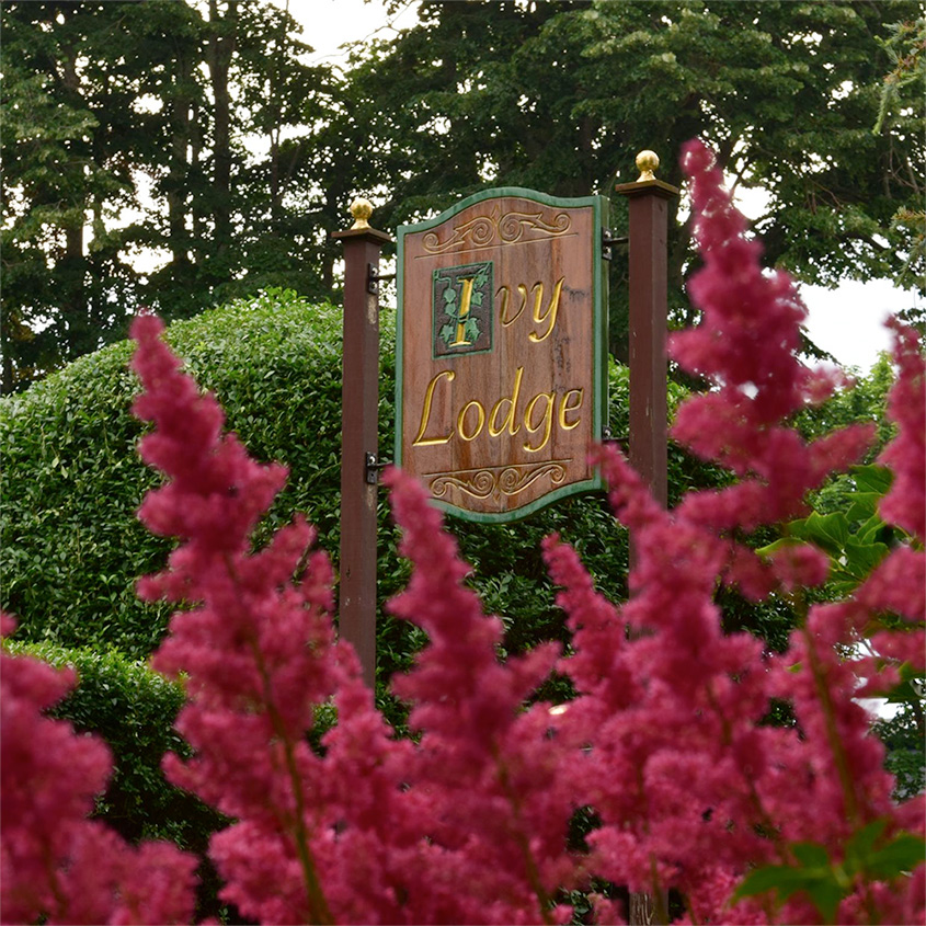 Ivy Lodge Holiday Gift Certificate Special