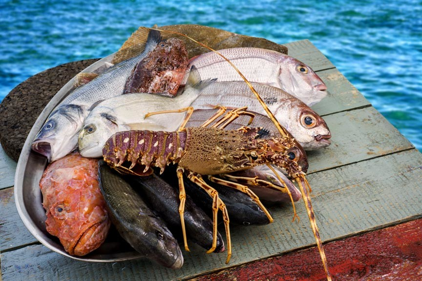 28th Annual Newport Seafood Festival at Bowen's Wharf