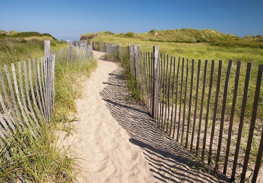 Life's A Beach On Newport County Beaches!