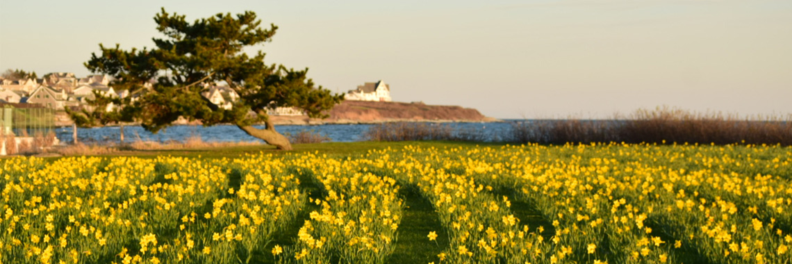 Newport Spring Season | Newport Inns of Rhode Island