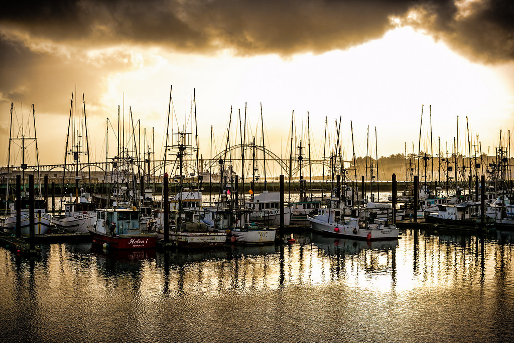 Boats in Yaquina Bay