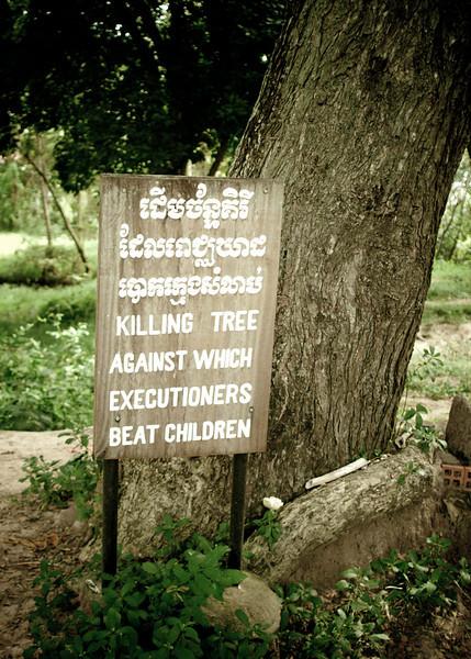baby killing tree