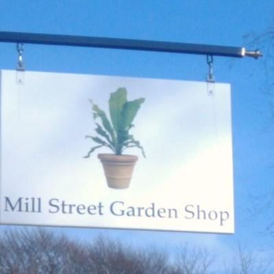 Green Thumbs and Newport Neighbors Welcome the Mill Street Garden Shop