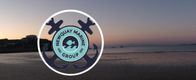 Newquay Marine Group BeachRangers
