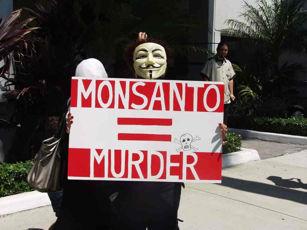 Man in Guy Fawkes mask protesting against Monsanto.