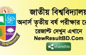 Honours 3rd Exam Year Result