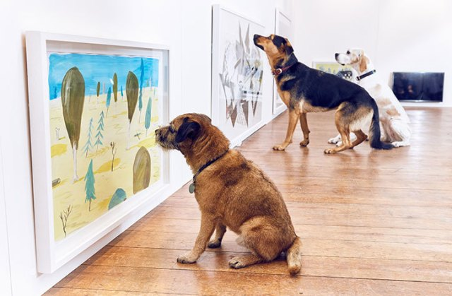 Dominic-Wilcox-art-for-dogs-exhibition11