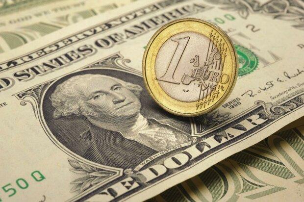 Доллар остался на уровне 24 гривны: курс валют в Украине на 5 ноября